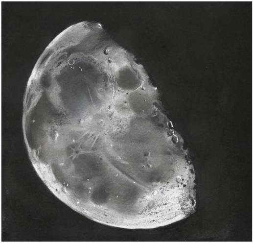Only A Waning Gibbous Moon In Mind Astronomy Sketch Of The Day