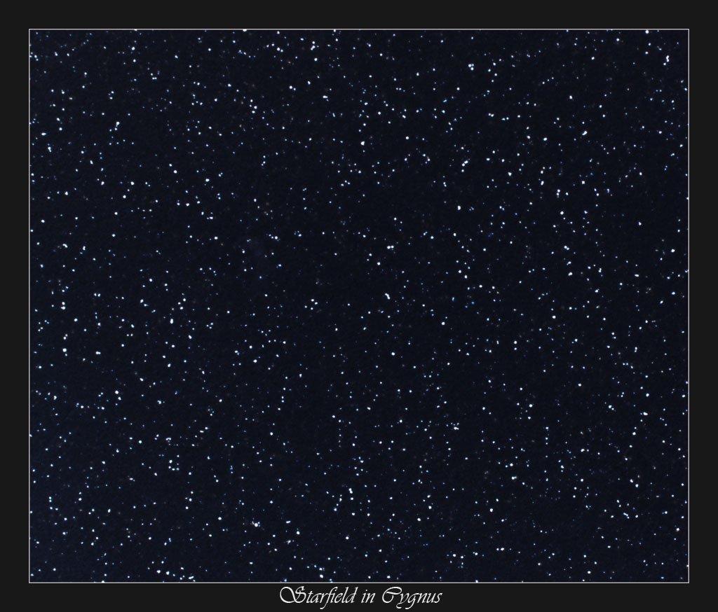 Cygnus Starfield 2