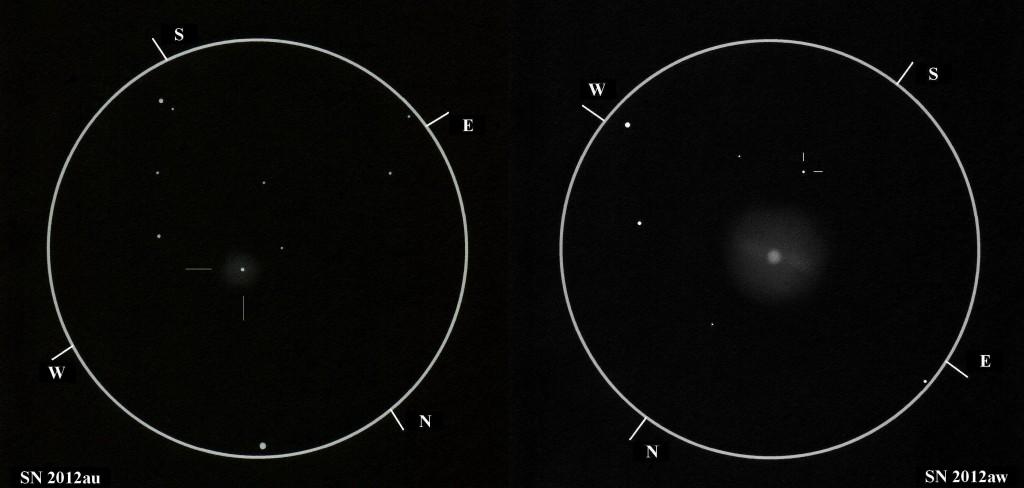 SN 2012au and SN 2012aw