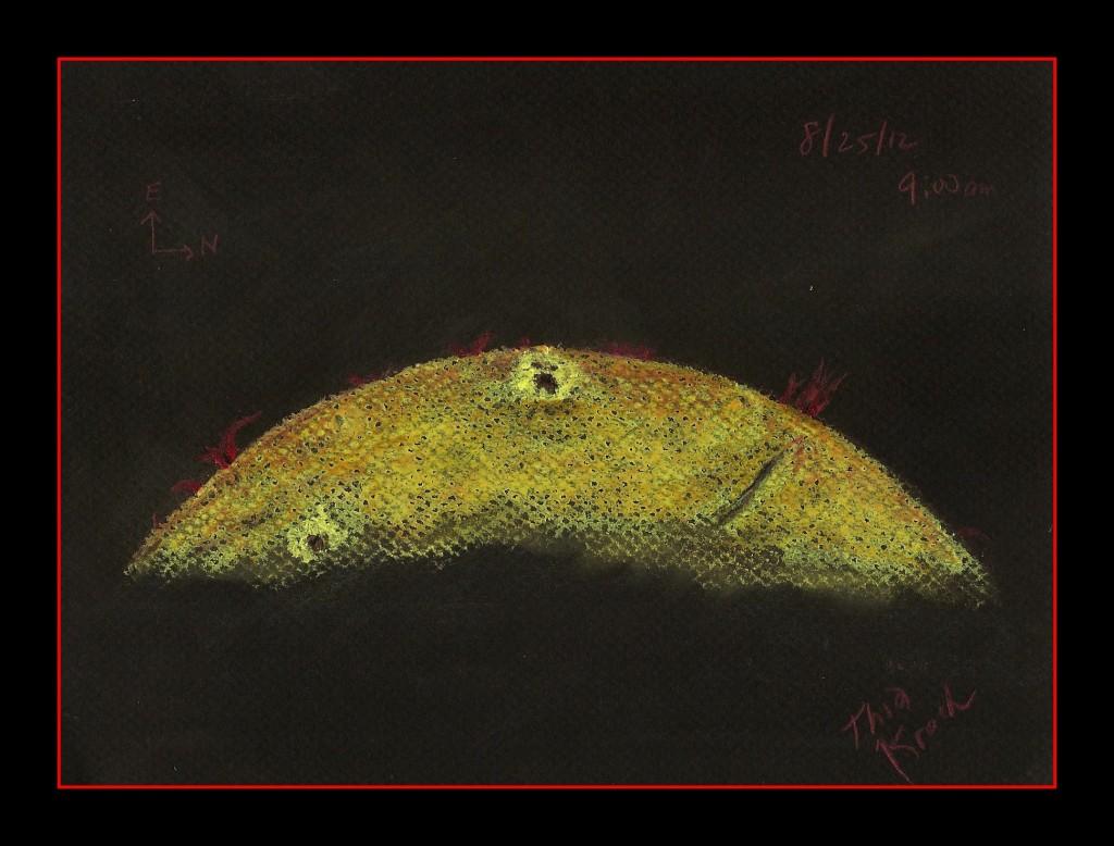 Solar Limb - August 25, 2012
