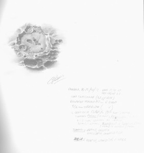 Full Sketch Sheet of Clavius Crater