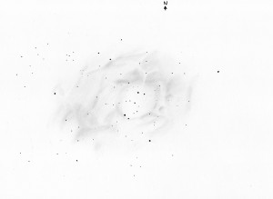 Rosette Nebula - Original Drawing