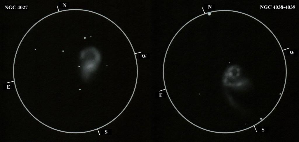 NGC 4027, 4038-4039