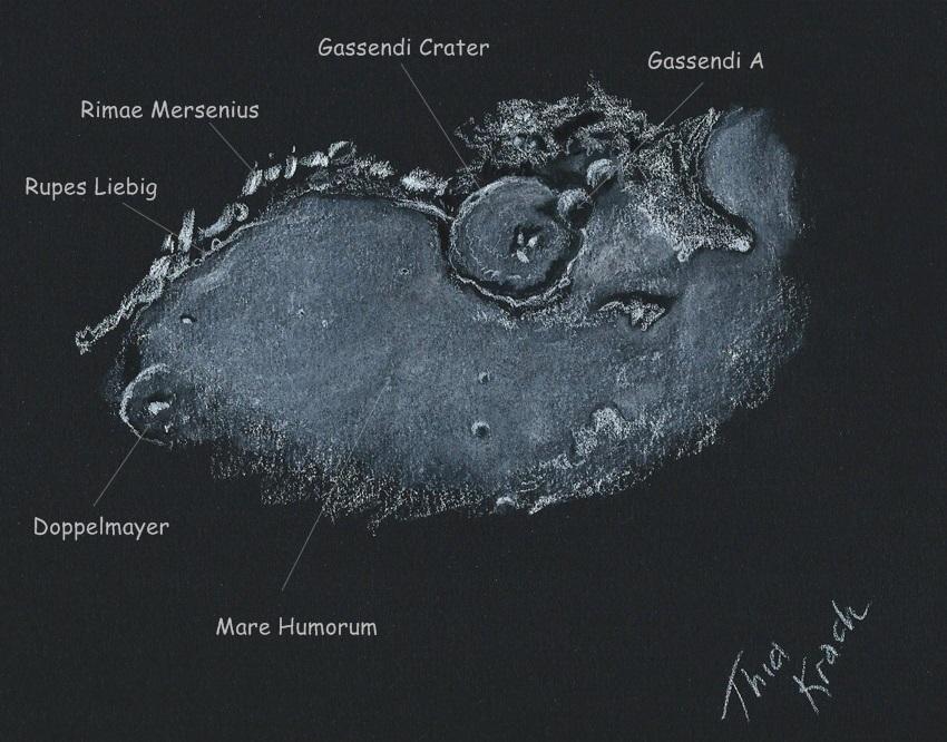 Gassendi, Rimae Mersenius and Rupes Liebig at the terminator labeled