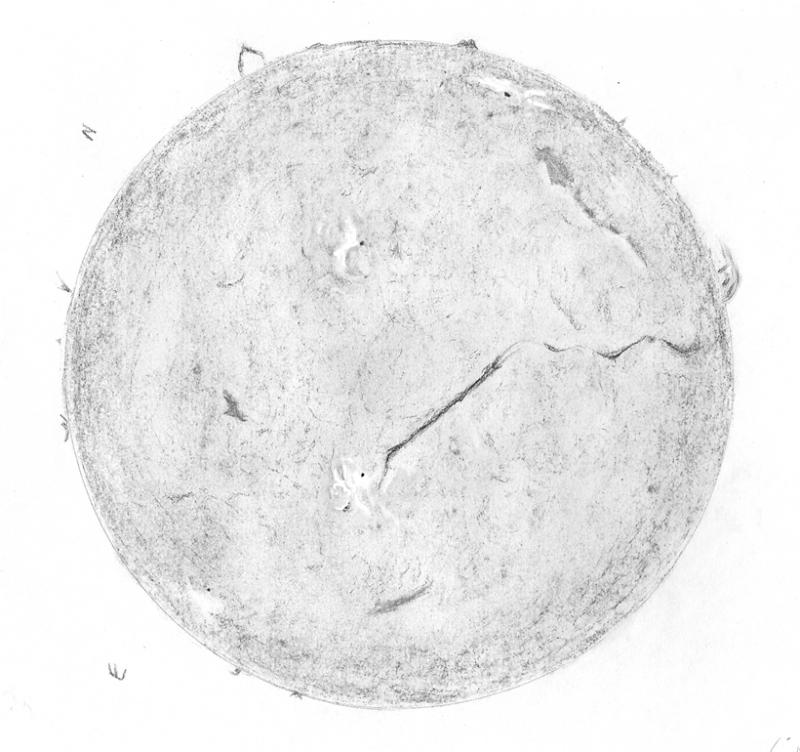 H-alpha Full Solar Disk - 8 February 2015
